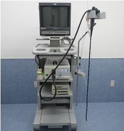 内視鏡: 胃や腸などの消化管の検査や異物の摘出に用います