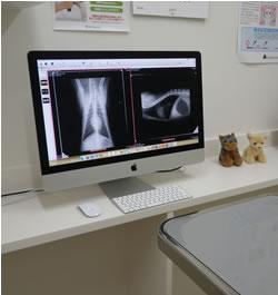 診察室モニター: レントゲン画像や顕微鏡の画像を診察室のモニターで見ることができます